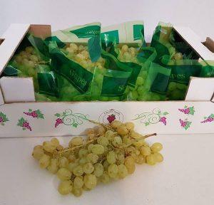 کیسه آنتی باکتریال انگور اسپک