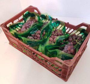 بهترین کیسه آنتی باکتریال انگور