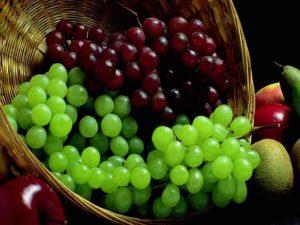 کیسه آنتی باکتریال انگور